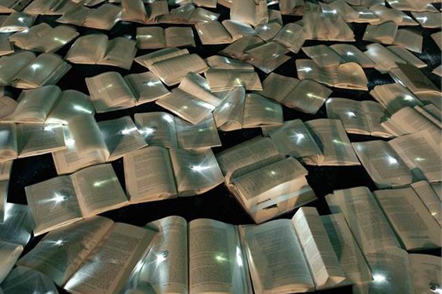 Literature VS. Traffic by Luzinterruptus